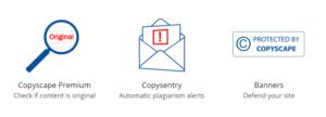 Analisa tu Sitio de contenido duplicado